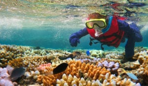 Top 3 must see natural wonders - Great Barrier Reef